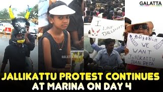 Jallikattu Protest Continues At Marina On Day 4