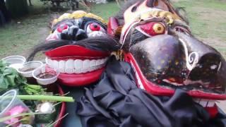 Ebeg Banyumasan Di Bali