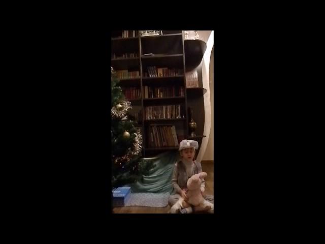 Изображение предпросмотра прочтения – АльбинаВиноград читает произведение «В ожиданиии зимы» С.А.Есенина