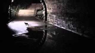 Ryuichi Sakamoto - Aoneko no Torso (Piano Solo)
