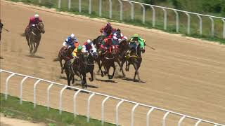 Vidéo de la course PMU HUNGARO HANDICAP