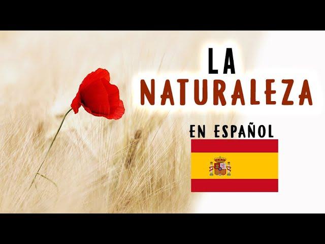 Vocabulario en español - LA NATURALEZA