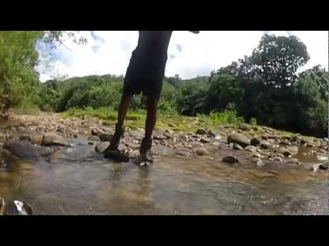 The Ultimate Trek - Raleigh International Adventure - Borneo