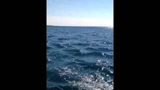 Conor surfing behind a Hobie Getaway catamaran