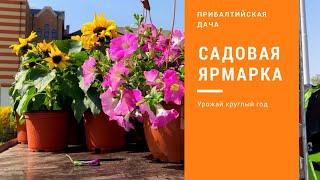 Весенняя Ярмарка Дача. Сад. Огород. Калининград