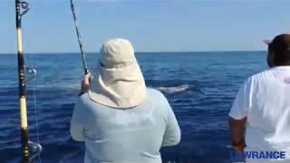 Striped Marlin aboard 3 HERMANOS