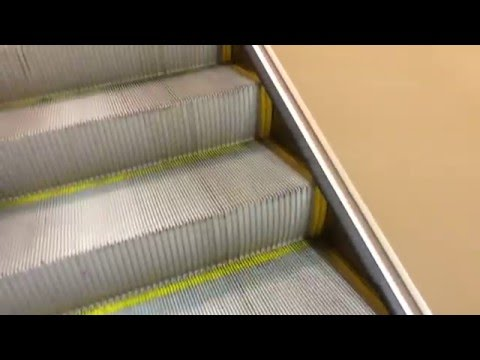 Montgomery G&P Escalators At JCPenney - Florence Mall, Florence, KY