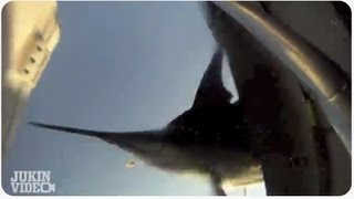 Six HUNDRED Pound Marlin Jumps on Fishing Boat