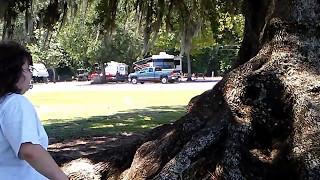 Binocular Girl and the Tree of Wisdom thumbnail