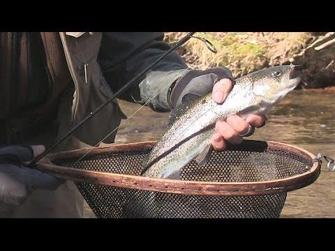 Fishing Socco Creek, NC, Cherokee Qualla Indian Reservation