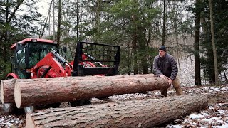 #660 Hobby Logging Some Softwoods in a Hardwood Forest