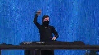 Alan Walker Niviro Flares Live performance