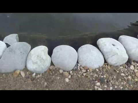 Искусственный пруд на даче.каскад из прудов. общий план.