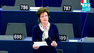 EU Parliament nothing more than a puppet of unelected officials - Diane James MEP