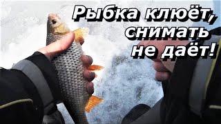 ПашАсУралмашА Рыбка клюёт снимать не даёт