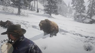 Red Dead Redemption 2: Don't Shoot the Bear