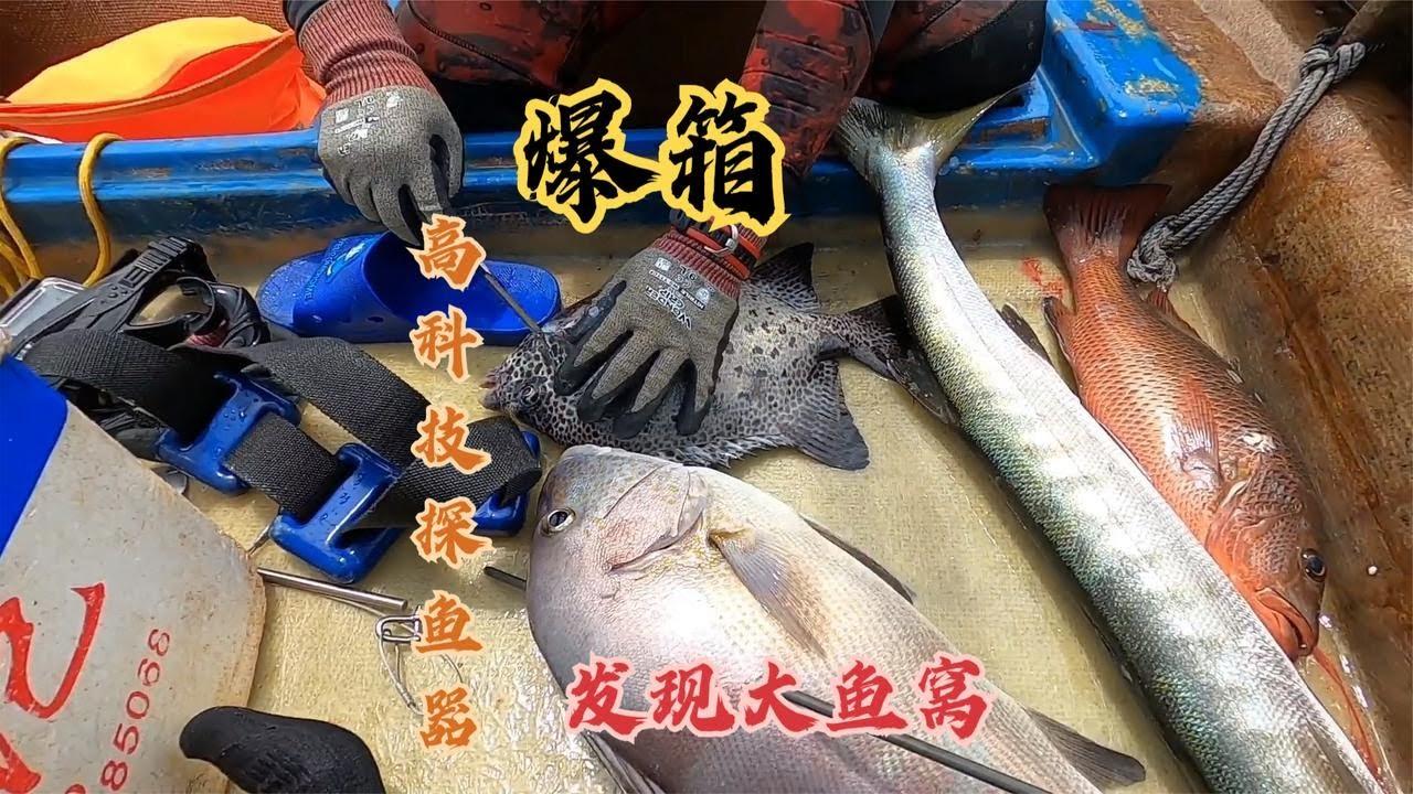 用高科技探魚器探測,潛下海底發現闖入了魚窩 【探海漁人】