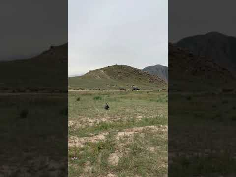 Eagle Hunters of Kyrgyzstan