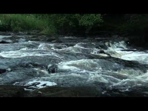 Fast Flowing River Sounds - 1 Hour - Relax With Nature!