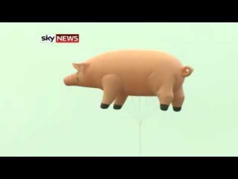 Pink Floyd's Pig Flies Again