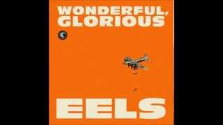 wonderful. glorious - eels