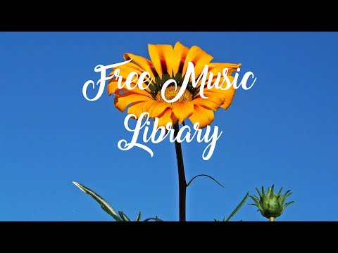 Royalty Free Music Library ♫ Morocco Sting - Kevin MacLeod