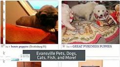 Evansville In Craigslist Personals - Casual Encounters Fun