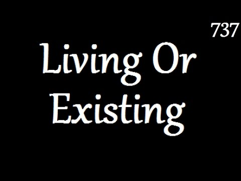 Living Or Existing? (Day 737)