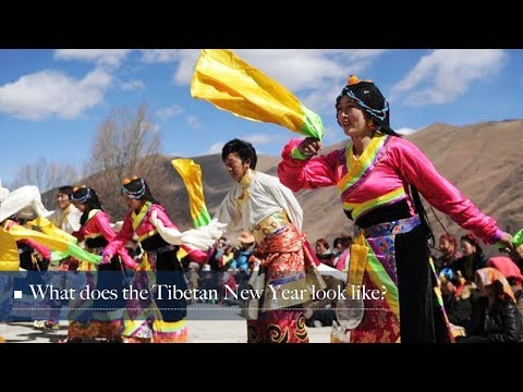 Live: What does the Tibetan New Year look like? 藏历新年知多少