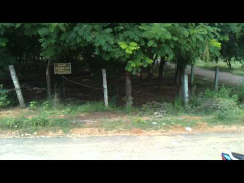 Sony Ericsson Vivaz pro video test sample (with new firmware R2EA023)