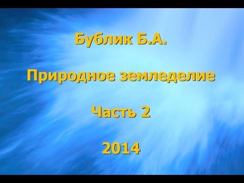 Солевой 19