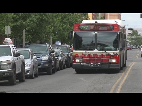 Dogs and cats now allowed on Albuquerque city buses