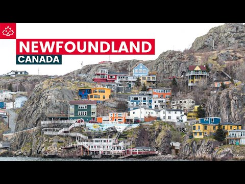 Road to 150: The Best Things To Do In Newfoundland