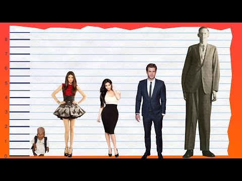 How Tall Is Kendall Jenner? - Height Comparison!
