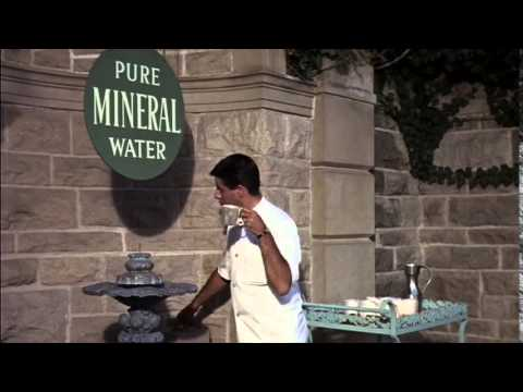 The Disorderly Orderly - Pure Mineral Water