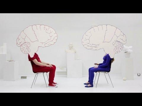 Was sind Spiegelneuronen?