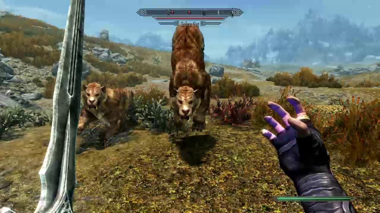 Skyrim elder scrolls v mods