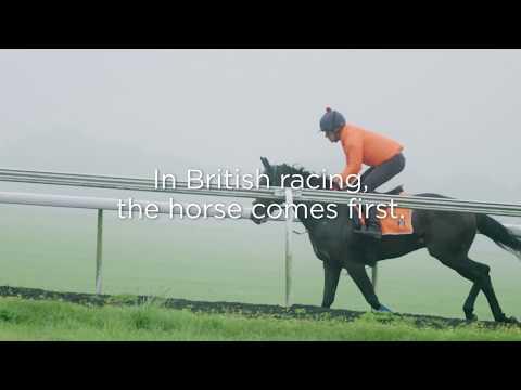 The Royal Treatment: Life Inside A Racing Yard