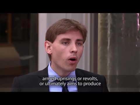 Freedom of Expression - Nicolas Hervieu  -  ENG