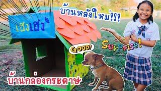 บ้านหมาทำจากกล่องกระดาษ l น้องใยไหม kids snook