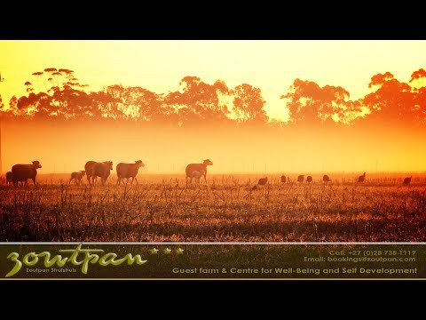 Zoutpan Struishuis Guest Farm Accommodation Albertinia Garden Route South Africa