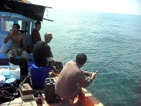 คริปตกปลาที่แหลมผักเบี้ย1
