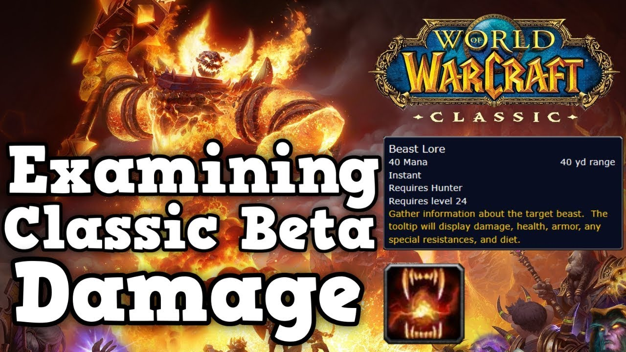Classic WoW Beta Damage Values Compared to Private Servers