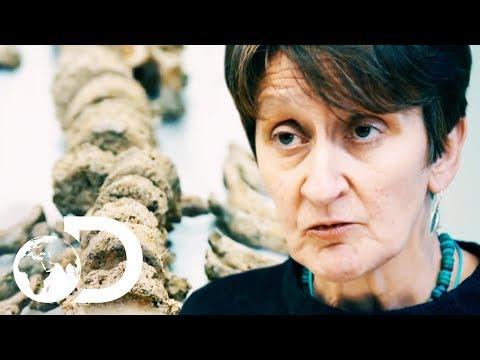 Shocking Human Remains Found Beneath Stonehenge! | Blowing Up History