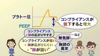 【医療動画 ケアネットDVD】ドクター力丸の人工呼吸管理 #8 呼吸仕事量(完全版)