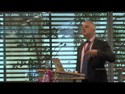 Podiumsdiskussion: Institutionelle Strategien zu MOOCs aus Hochschulsicht (08/09/15)