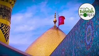Nabi (ﷺ) ki Jaan Ali, Maan Ali, Nabi ne khud kaha Maula hai Ali, Ya Ali Maula, Ali Maula (as)
