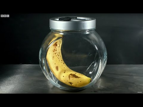 How To Ripen Fruit Quickly - Bang Goes The Theory - Brit Lab - BBC