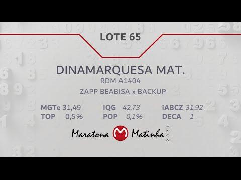 LOTE 65 Maratona Matinha