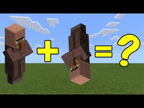 i-combined-a-villager-and-an-upside-down-villager-in-minecraft---here's-what-happened...